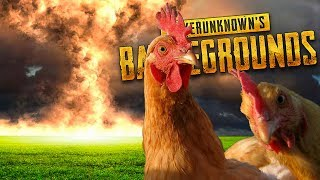 TEARING EVERYTHING APART TO GET CHICKENS! | PLAYERUNKNOWN'S BATTLEGROUNDS