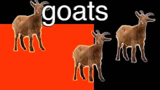 Goats  Neave TV
