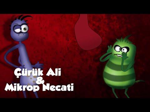 Xxx Mp4 Süt Diş Çürük Ali Ve Mikrop Necati Grafi2000 3gp Sex
