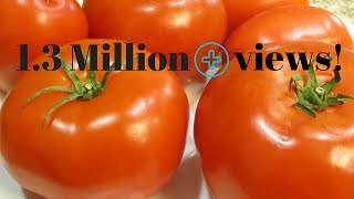 Best way to store TOMATOES for months (No cook method)|Poonam