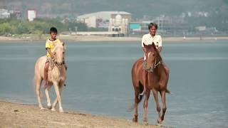 Mompadiu Jara, Tradisi Mandi Kuda di Kota Palu