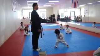 Karate Little Boy Trying To Break Board
