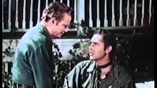 Jesse James' Women (1954) DON