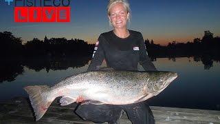 Laxfiske med Evelina Henriksen Team Abu Garcia!