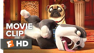The Nut Job 2: Nutty by Nature Movie Clip - Rollover (2017) | Movieclips Coming Soon