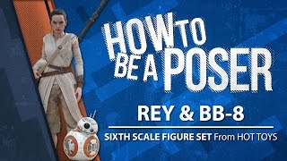 How to be a Poser - Hot Toys