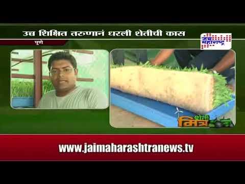 hydrophonic grass for goats junnar goat farm Pune Maharashtra India news on jai maharashtra new