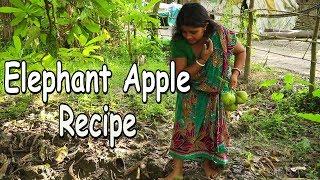 Elephant Apple Recipe - Elephant Apple cook in village - Prawn Recipe With Elephant apple