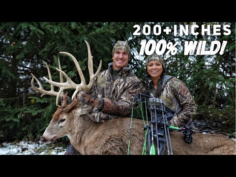 Xxx Mp4 The Hunt For Wires Josh's Bow Kill Of A Lifetime A 215 Inch Monster Buck Bowmar Bowhunting 3gp Sex
