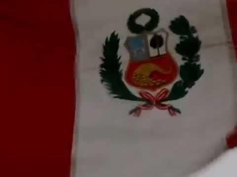 ESCUELA DE ANFIBIOS DEL PERU VIDEO ORIGINAL