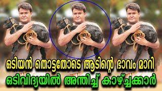 ലാലേട്ടന്റെ ഒടിവിദ്യകണ്ട് കണ്ണുംതള്ളി കാഴ്ചക്കാർ! | Odiyan Manikyan