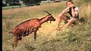 Tischlein, deck dich (1956) - Deutsche Märchenfilme und Kinderfilme