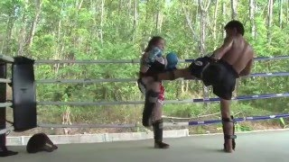 12 year old Future Female Fighter trains @ Tiger Muay Thai