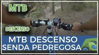 Downhill DH descenso MTB bici montaña en rambla Pedregosa Coto Cuadros