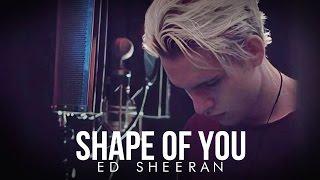 shape of you  ed sheeran  cover