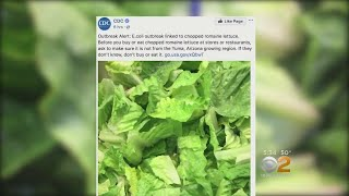 60 People Sickened In 16 States From Bad Lettuce