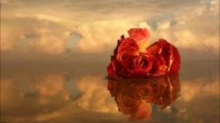 Meat Loaf-it's all coming back to me now (with lyrics)