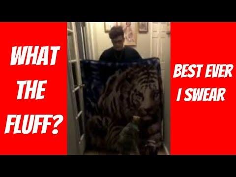 Xxx Mp4 FUNNIEST DOG BLANKET MAGIC TRICK FAIL EVER 🤣😂😂 What The Fluff Dog Sex 3gp Sex