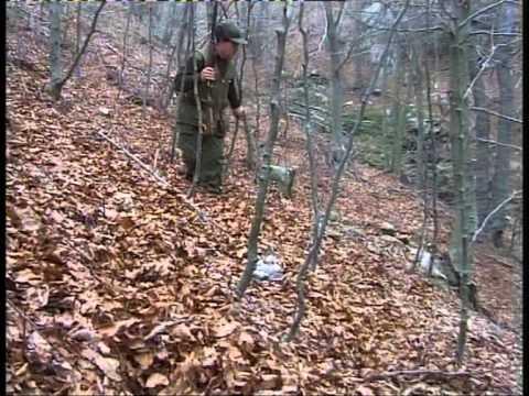 caza de conejos pt2
