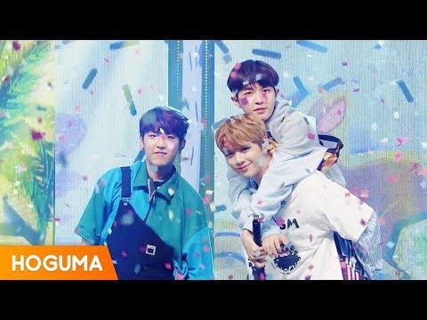 워너원 트리플포지션 (Wanna One Triple Position) - 캥거루 (Kangaroo) 교차편집 (stage mix)