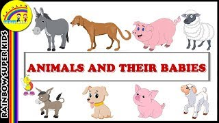 Animals and their Young Ones PART 2  Animals & their Babies  Best Learning Videos
