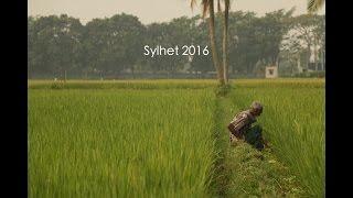 Bangladesh Sylhet 2016