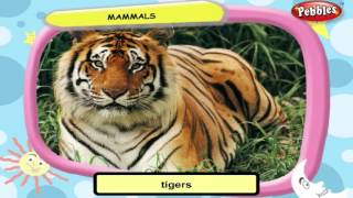 Science For Class 3 : Movement of Animals | Science Videos For Kids | Science Projects