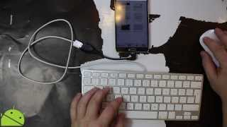 Note 3 - OTG Cable with a Keyboard and a Mouse