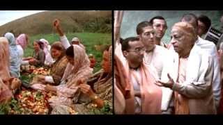 (HINDI-Language) Documentary Film