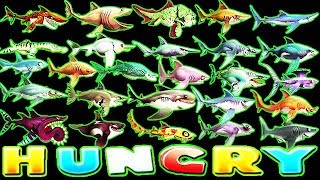 HUNGRY SHARK WORLD ALL 26 SHARKS SUPERSIZED (BUZZ)