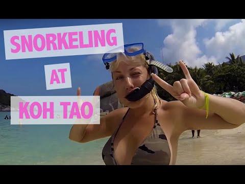 Snorkeling at Koh Tao / Koh