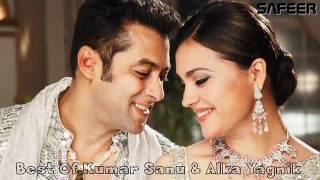 Tumko Humse Pyaar Hai   Kumar Sanu   Alka Yagnik Hindi Love Romentic Songs
