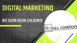 Dijital marketinq şirkəti