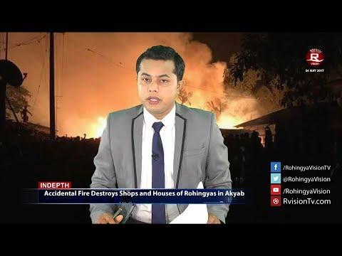 Rohingya Daily News 24 May 2017