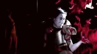 SHE-WOLF interdisciplinary dance performance / 60 min