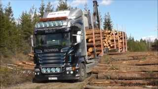 Scania R730 6x4 Timber Truck Loading