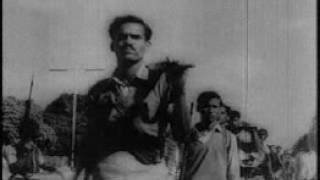 ১৯৭১ বাংলাদেশের মুক্তিযুদ্ধ ।