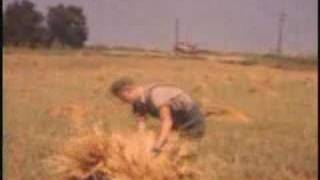 Farm Technological Progress, 1938-1958