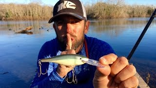 Modifying a Rapala Shad Rap to Catch More Bass! (ft. Mike Iaconelli)