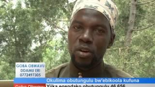 Okulima obutungulu bw'ebikoola kufuna