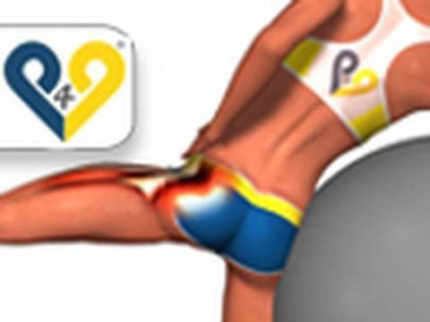 Abdução do quadril na bola suíça exercicios musculação para gluteos