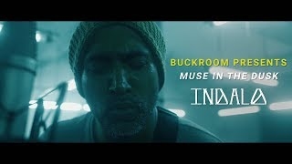 Buckroom Presents: Muse in the Dusk   Session 1   Indalo