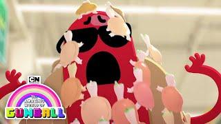 Killer Turtles | Gumball | Cartoon Network