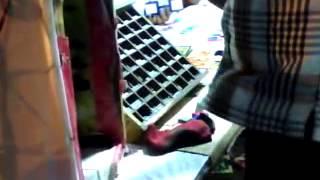 desi scandal girl in my shop