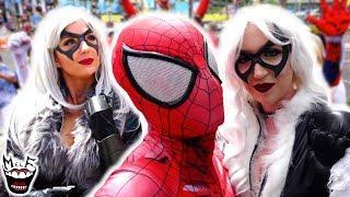 Spider-Man: SPIDER-VERSE vs SAN DIEGO COMIC CON! Black Cat, Spider-Gwen   MELF