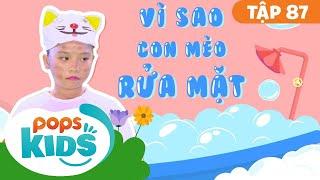 Mầm Chồi Lá Tập 87 - Vì Sao Mèo Con Rửa Mặt   Nhạc thiếu nhi remix  Vietnamese Songs For Kids