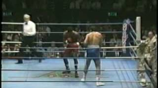 The Perfect Punch - Lennox Lewis Highlights