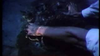 Dario Argento- Master of Horror 1/6.