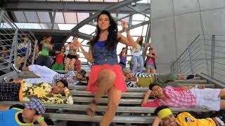 Dhinka Chik HD item Song Solman and Asin