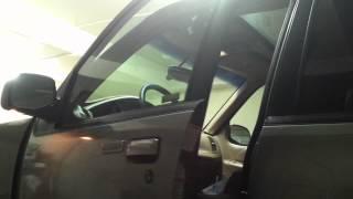 Gunther the shelter mutt opens a car door.